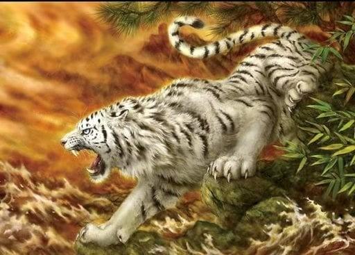 Bracelet oeil de tigre : Signification