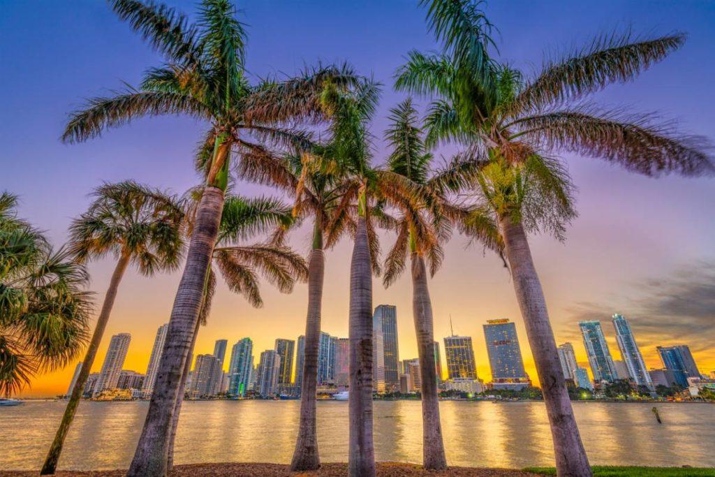 Quelle compagnie aérienne pour aller à Miami et découvrir ses attraits ?