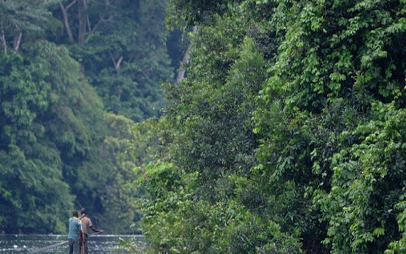 Dan Gertler : Actualité en République Démocratique du Congo