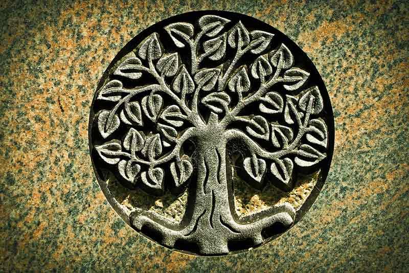 L'arbre de vie : un symbole porte-bonheur