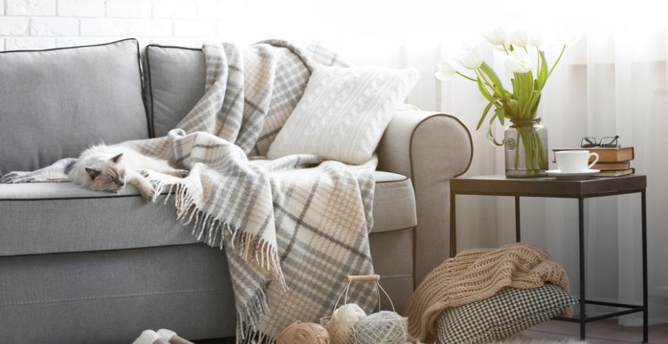 Comment choisir une housse durable pour protéger votre canapé ?
